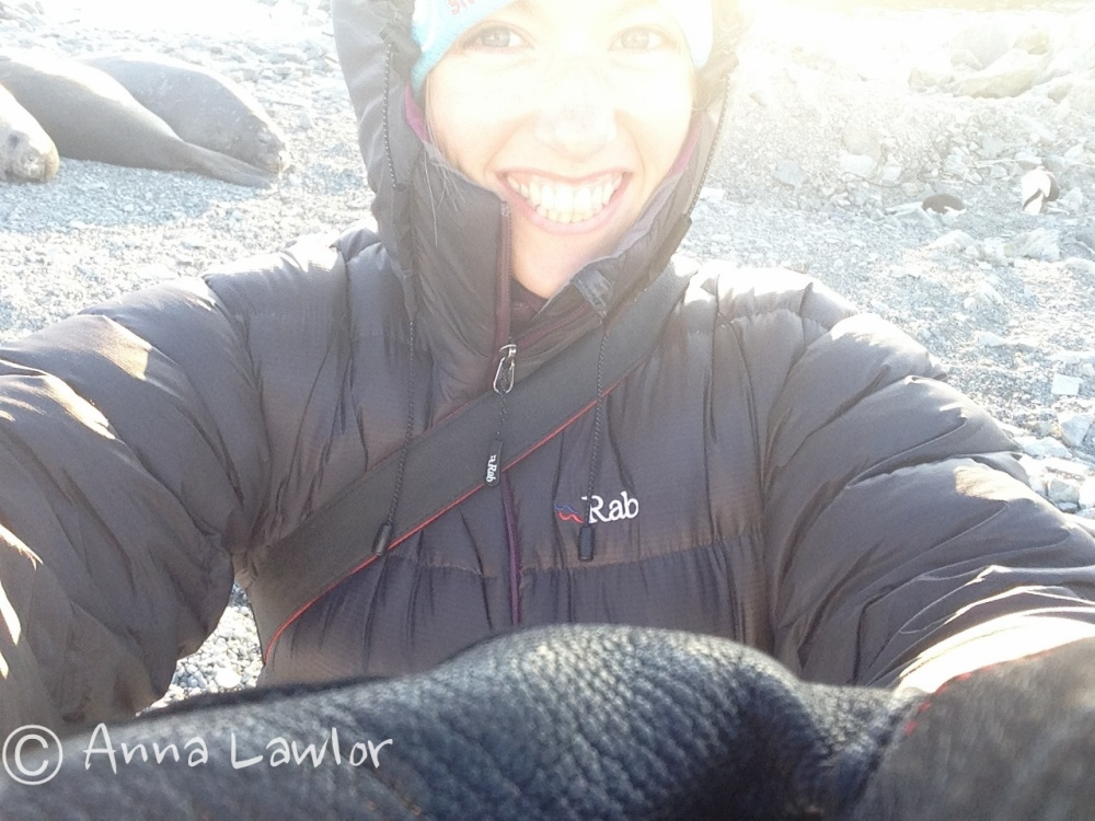 Elephant seal and Adelie Penguin Selfie
