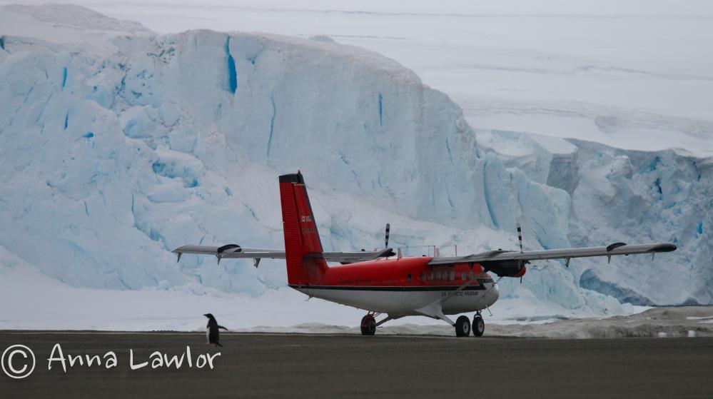 Rothera-Antarctica-29