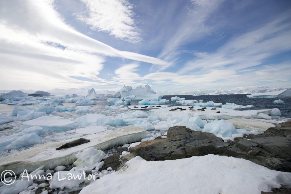 Rothera-Antarctica-33